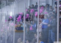 2010 Pink the Rink Event